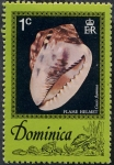 Stamps Dominica -  Conchas