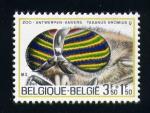 Stamps Europe - Belgium -  aniversario del zoo