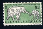 Stamps Czechoslovakia -  elefante africano