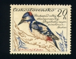 Stamps Europe - Czechoslovakia -  Pajaro carpintero