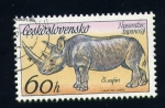 Stamps Europe - Czechoslovakia -  rinocerote