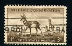 Stamps United States -  conservación de la naturaleza