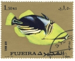 Stamps Asia - United Arab Emirates -  pez exotico