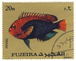 Sellos de Asia - Emiratos �rabes Unidos -  pez exotico