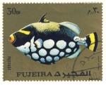 Stamps Asia - United Arab Emirates -  pez exotico