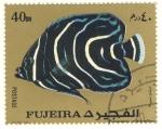 Stamps United Arab Emirates -  pez exotico