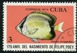 Sellos de America - Cuba -  Aniv. Nacimiento Felipe Poey