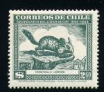 Sellos del Mundo : America : Chile : Chinchilla Laniger