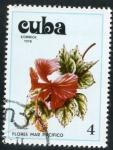 Sellos de America - Cuba -  Flores del Mar Pacífico