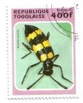 Stamps Africa - Togo -  Coleóptero