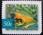 Sellos de Oceania - Australia -  Orange-thighed Tree Frog