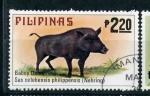 Stamps Asia - Philippines -  jabalí filipino