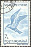 Stamps : Europe : Romania :  fauna, chlidonas hybrida