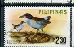 Stamps Philippines -  Pitta