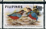 Stamps Asia - Philippines -  koch´s pitta