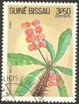Stamps Africa - Guinea Bissau -  flora, euphorbia milii