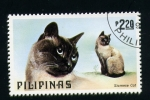 Stamps Philippines -  siames