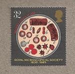 Stamps United Kingdom -  150 Aniv. Sociedad Microscopios
