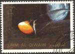 Sellos de Asia - Emiratos Árabes Unidos -  umm al qiwain, meteorito