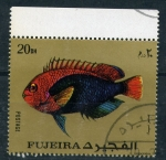 Stamps United Arab Emirates -  fauna marina