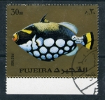 Stamps Asia - United Arab Emirates -  fauna marina