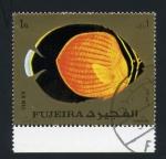 Sellos de Asia - Emiratos Árabes Unidos -  fauna marina