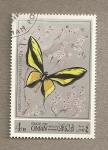 Sellos del Mundo : Asia : Omán : Mariposa Ornithopthera paradisea
