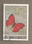 Stamps Asia - Oman -  Mariposa Lemonias sudias