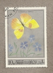 Stamps Asia - Oman -  Mariposa Captosilia philea