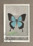 Stamps Asia - Oman -  Mariposa Papilio Ulysses