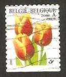 Stamps Europe - Belgium -  flora, tulipan