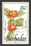 Sellos del Mundo : America : Barbados : flora, salvia roja