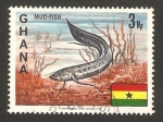 Stamps Africa - Ghana -  Pez lodo