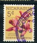Stamps Nicaragua -  cayetana skinner