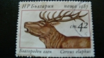 Stamps Bulgaria -  Adjudicado
