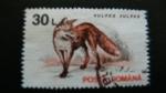 Stamps Romania -  Zorro