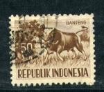 Sellos de Asia - Indonesia -  banteng