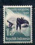 Sellos de Asia - Indonesia -  Tapir