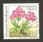 Stamps Germany -  1338 - planta del jardín botánico de rennsteiggarten, oberhof, primaveras