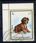 Stamps United Arab Emirates -  cachorro