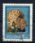 Stamps Poland -  Sparassis crispa wulf