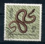 Stamps Poland -  Coronella austriaca