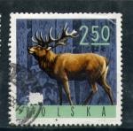 Sellos de Europa - Polonia -  ciervo