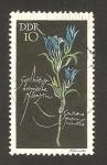 Stamps Germany -  933 - planta proteguida, gentiane