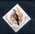 Sellos de Europa - Rumania -  paloma