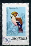 Stamps Europe - Albania -  coccothraustes coccothraustes