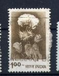 Stamps India -  Algodon