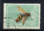 Sellos de Europa - Rumania -  scolia maculata maculata