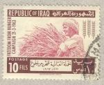 Sellos de Asia - Irak -  campaña contra el hambre