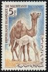 Stamps Africa - Mauritania -  Fauna